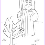 Moses And The Burning Bush Coloring Pages Unique Photos Bible Stories
