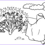 Moses And The Burning Bush Coloring Pages Unique Photos Burning Bush Moses