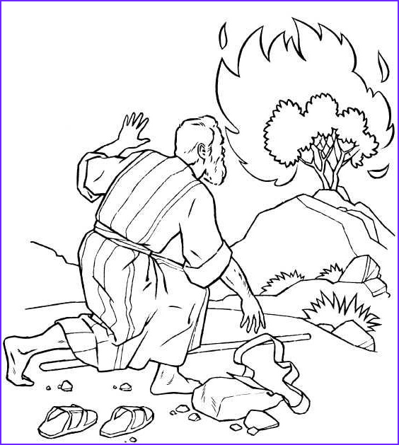 Moses Burning Bush Coloring Page Best Of Stock Moses and Burning Bush Coloring Pages Google Search
