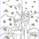 Moses Coloring Pages Best Of Photography 84 Best Images About Moses Plagues On Pinterest