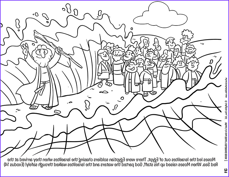 45 New Photos Of Moses Coloring Pages Coloring Page for Kids
