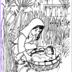 Moses Coloring Pages Inspirational Image Baby Moses Floated The River Coloring Pages