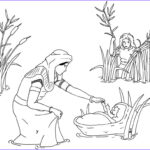 Moses Red Sea Coloring Page Unique Photos Free Printable Moses Coloring Pages For Kids