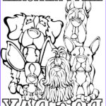 National Coloring Book Day Best Of Collection 9 Best Coloring Pages Books Images On Pinterest