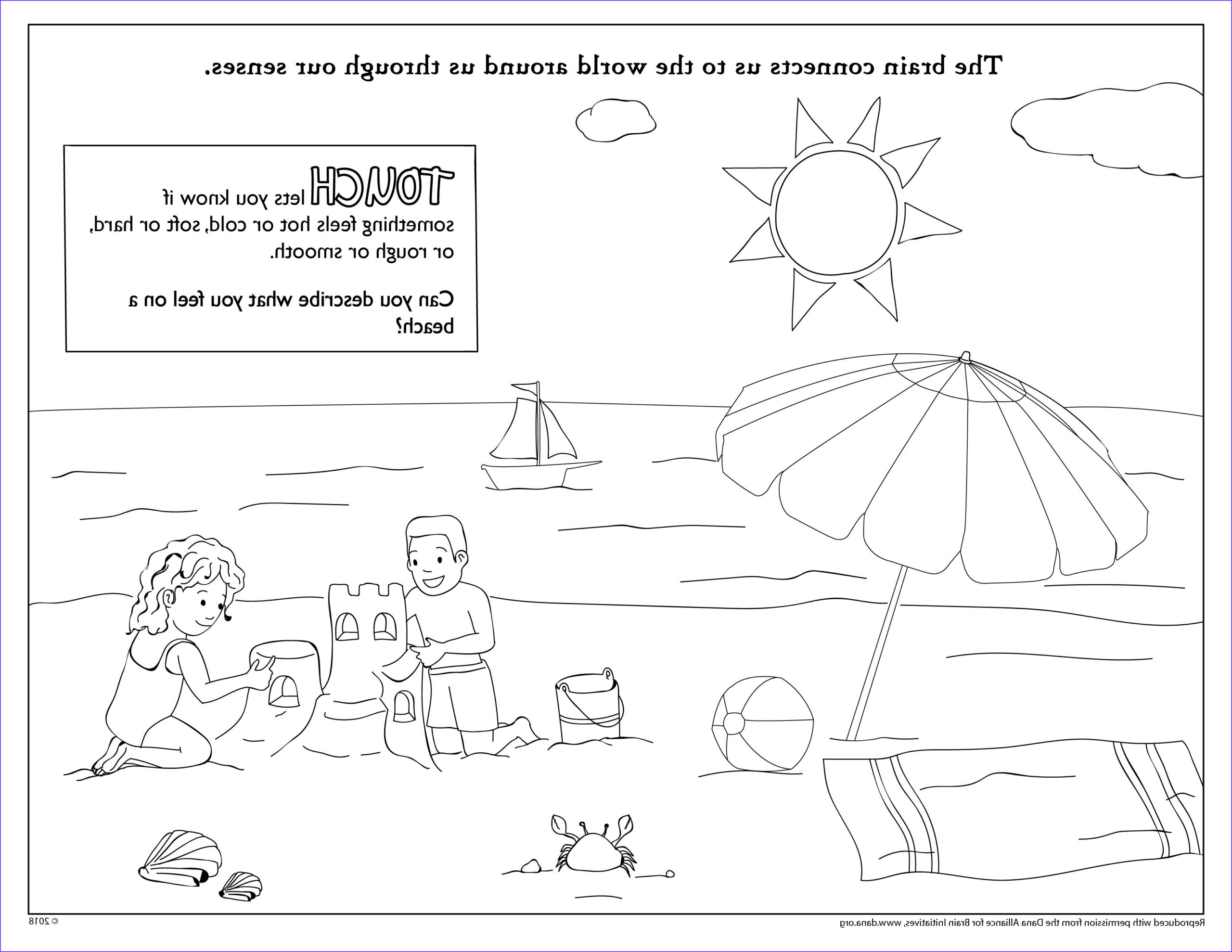 try some brainy pages for national coloring book day
