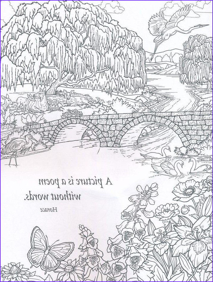 Nature Coloring Book Beautiful Image 125 Best Color Art therapy Quotes Sayings and Words