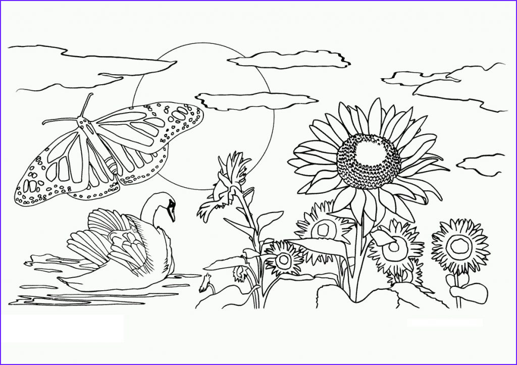 Nature Coloring Book Beautiful Photography Free Printable Nature Coloring Pages for Kids Best