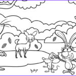 Nature Coloring Book Beautiful Photography Nature Cat Coloring Pages