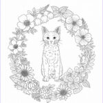 Nature Coloring Book Beautiful Photos Harmony Nature Adult Coloring Book Pg 39