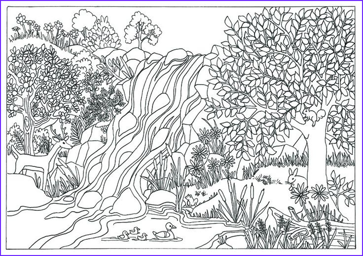 Nature Coloring Book Cool Image Printable Waterfall Nature Scene Coloring Page Coloring
