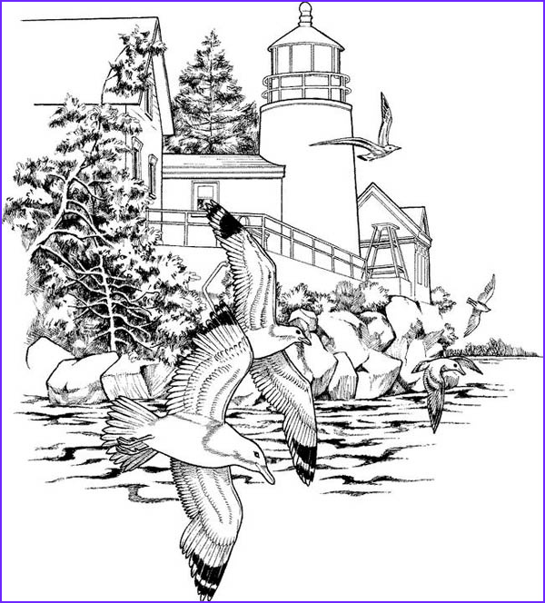 nature coloring pages for adultsfairy adults