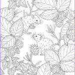 Nature Coloring Pages For Adults Awesome Images 17 Beste Afbeeldingen Over Kleurplaten Op Pinterest
