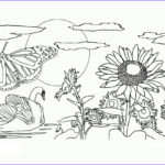 Nature Coloring Pages For Adults Elegant Gallery Free Printable Nature Coloring Pages For Kids Best
