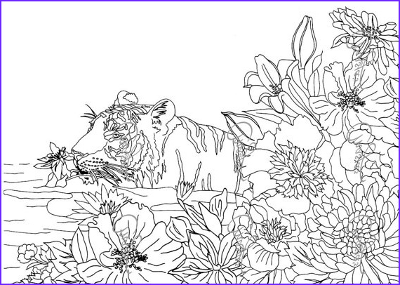 Nature Coloring Pages for Adults Elegant Image Enchanting Appearance Of the Nature 17 Nature Coloring