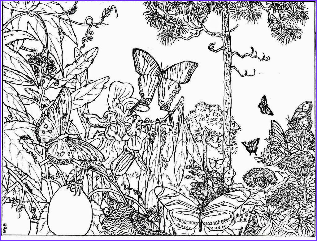 best nature coloring pages for adults 5299