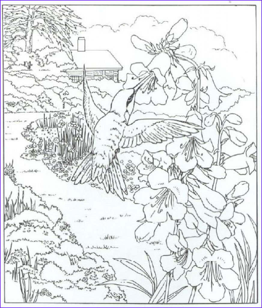 Nature Coloring Pages for Adults Inspirational Photos Pin by Deanna Lea On Color Scenery Pages