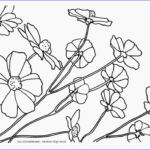 Nature Coloring Pages For Adults Luxury Stock Nature Coloring Pages For Adults Coloring Home
