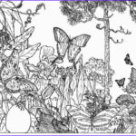 Nature Coloring Pages For Adults New Gallery Coloring Pages Ely Nature Coloring Pages For Adults