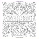 Naughty Adult Coloring Books Beautiful Image 1000 Images About Coloring Pages On Pinterest