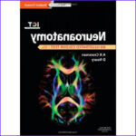 Neuroanatomy Coloring Book Best Of Gallery Neuroanatomy An Illustrated Color Text 5th 2014