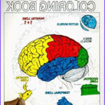 Neuroanatomy Coloring Book Elegant Collection 84 Best Medical School Curriculum Images On Pinterest