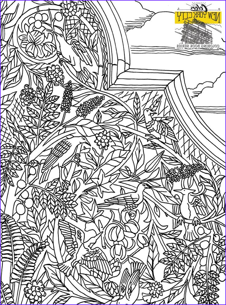 new york city coloring book color new york city