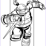 Ninja Coloring Unique Collection 88 Best Images About Ninja Turtles Coloring Pages On Pinterest