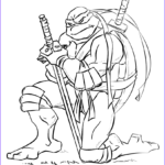 Ninja Turtle Coloring Pages Best Of Collection Leonardo From Ninja Turtles Coloring Page