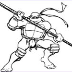 Ninja Turtles Coloring Pages Unique Collection Teenage Mutant Hero Turtles Free Colouring Pages