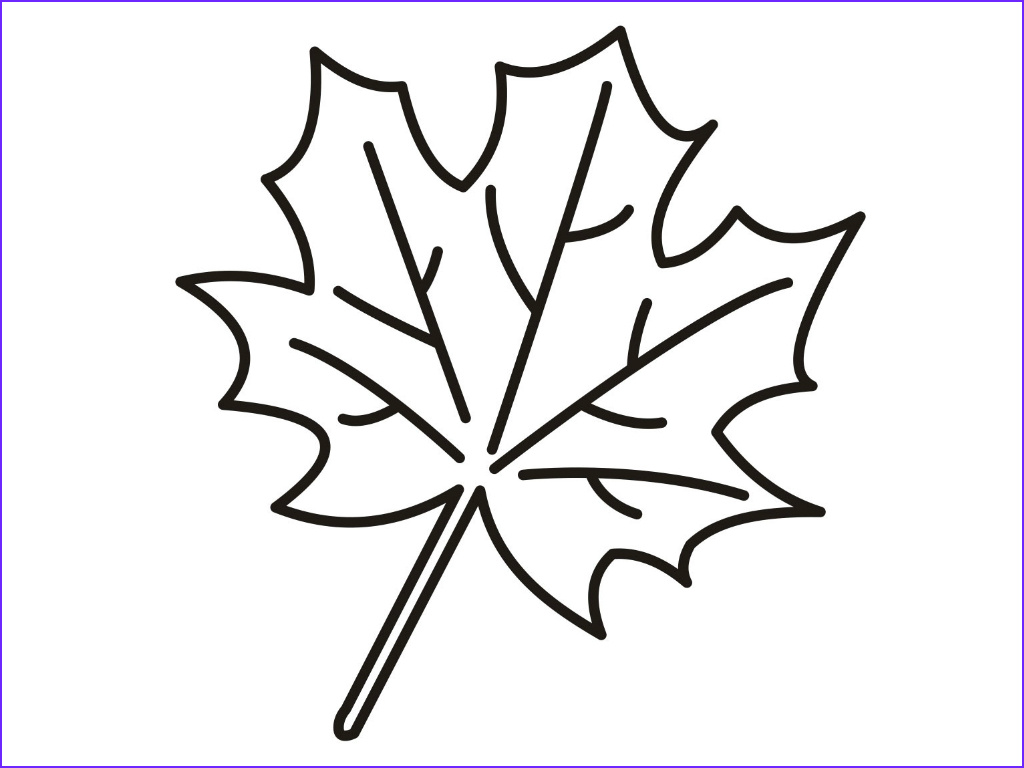 Oak Leaf Coloring Page Awesome Photography Oak Leaf Drawing at Getdrawings