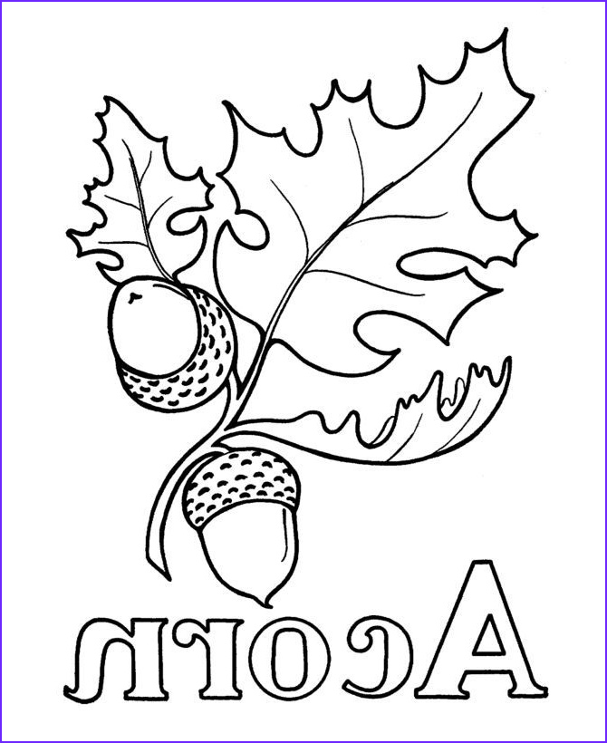 Oak Leaf Coloring Page Beautiful Gallery Oak Leaves and Acorns Drawing for Wood Burning Google