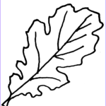 Oak Leaf Coloring Page Beautiful Photos Free Picture Oak Leaves Download Free Clip Art Free
