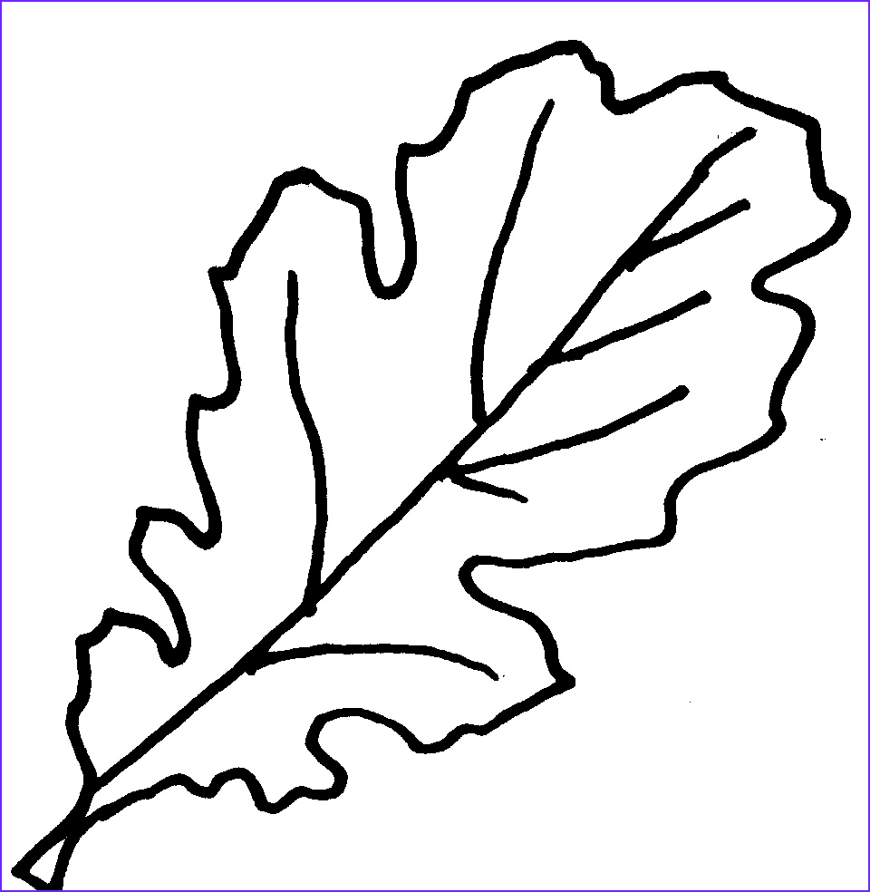 Oak Leaf Coloring Page Cool Collection Free Picture Oak Leaves Download Free Clip Art Free