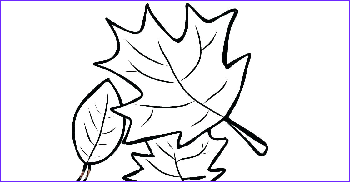 Oak Leaf Coloring Page Cool Photos Oak Leaves Coloring Pages at Getcolorings