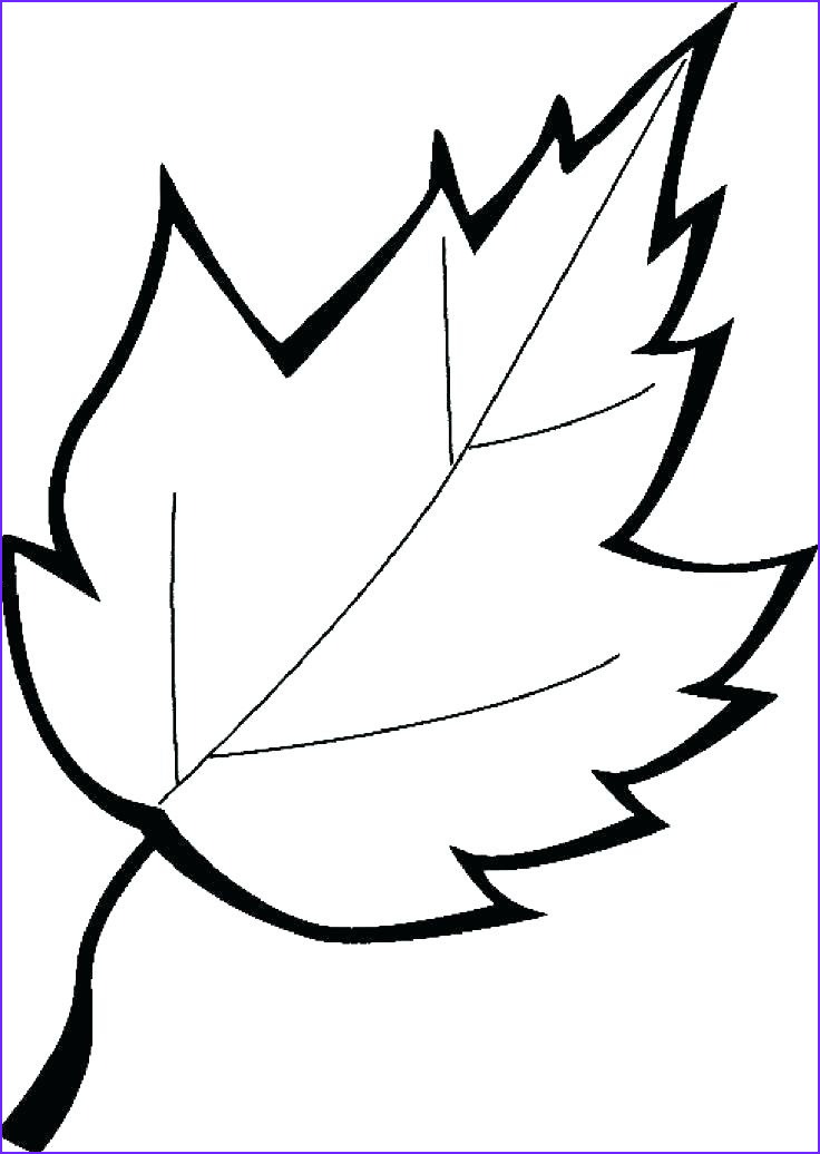Oak Leaf Coloring Page Luxury Gallery Oak Leaves Coloring Pages at Getcolorings