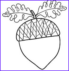 Oak Leaf Coloring Page Luxury Photos Maple Leaf Clipart Black and White Clipart Panda Free
