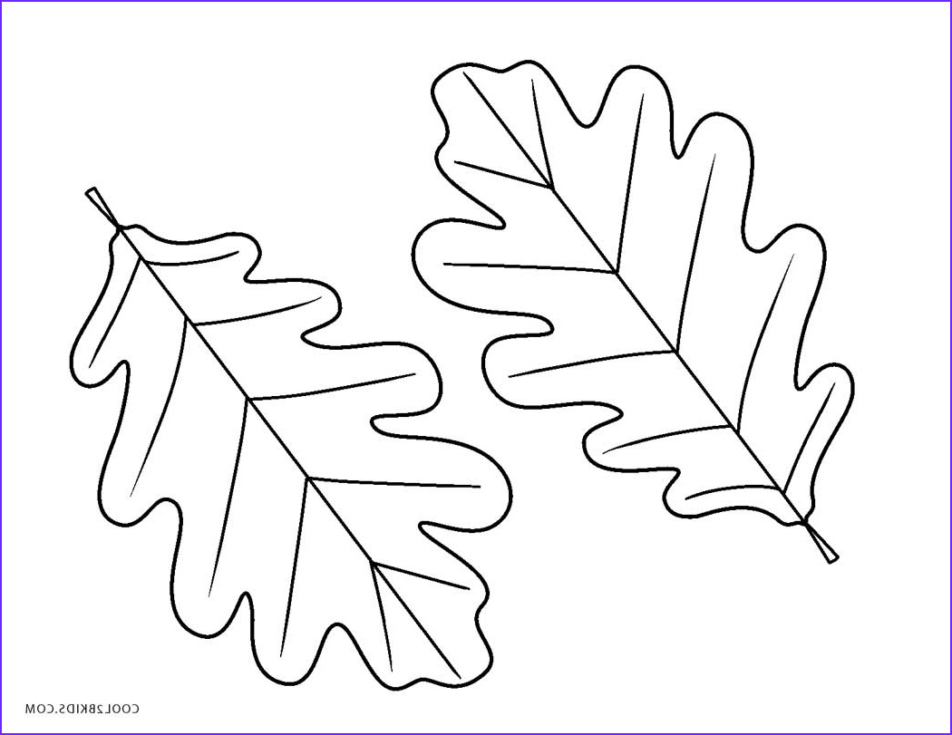 Oak Leaf Coloring Page New Photos Free Printable Leaf Coloring Pages for Kids
