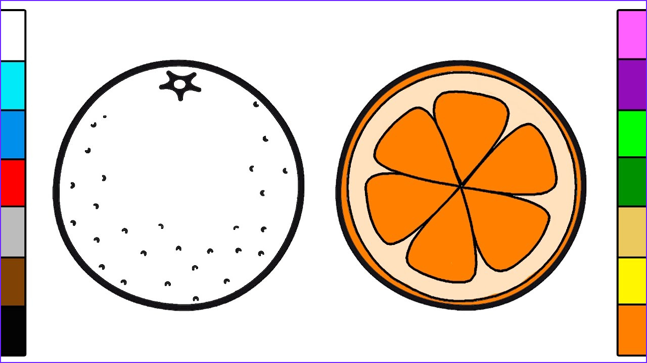 Orange Coloring Page New Gallery orange Fruit Coloring Page for Kids