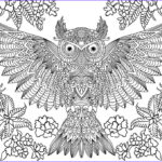 Owl Adult Coloring Pages Beautiful Stock 10 Difficult Owl Coloring Page For Adults