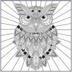 Owl Adult Coloring Pages Best Of Photos Owls Adult Coloring Book With Relaxation Cd Color With Music
