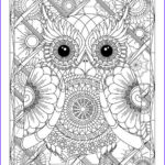 Owl Adult Coloring Pages Cool Collection 17 Best Images About Owl Coloring Pages For Adults On
