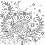 Owl Adult Coloring Pages Luxury Photos Owl Coloring Page Color Me Happy