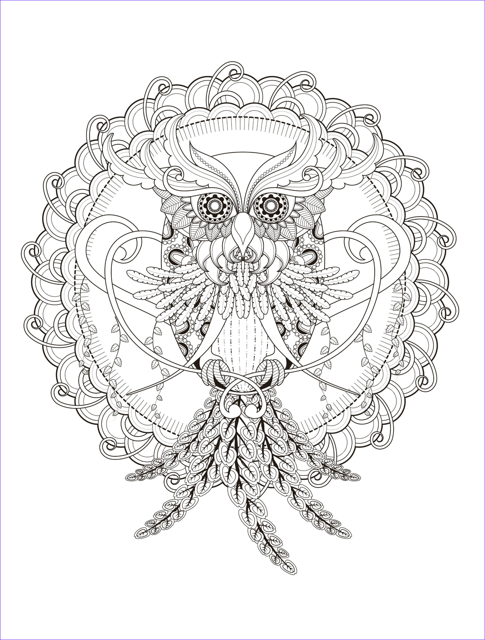 Owl Coloring Awesome Photography Owl Coloring Pages for Adults Free Detailed Owl Coloring