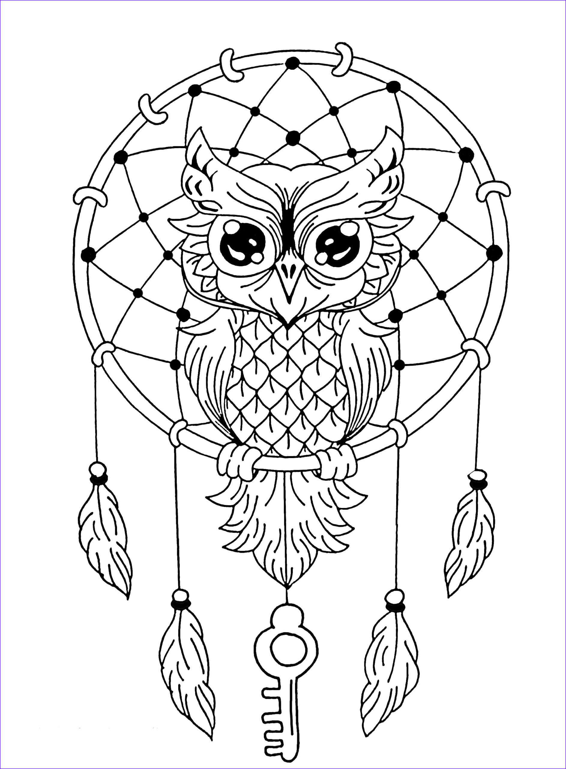 Owl Coloring Beautiful Image Owl Dreamcatcher Owls Adult Coloring Pages