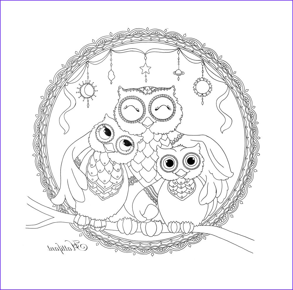 Owl Coloring Beautiful Photos Owl Family Love Coloring Page Hattifant