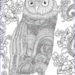 Owl Coloring Book Beautiful Photography Owl Coloring Pages A Collection Of Ideas To Try About