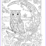 Owl Coloring Book Best Of Gallery Owl Coloring Pages For Adults Free Detailed Owl Coloring