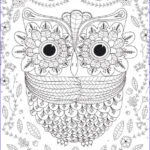 Owl Coloring Book Best Of Photos Big Eyed Owl Adult Coloring Page