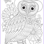 Owl Coloring Book Inspirational Gallery Groovy Owls Coloring Book By Thaneeya Mcardle — Thaneeya