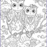 Owl Coloring Book Luxury Images Owl Coloring Pages For Adults Free Detailed Owl Coloring